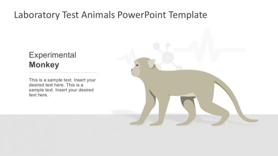 Lab Experimental Monkey for PowerPoint