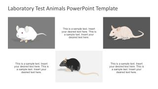 Animal Testing PowerPoint Presentation