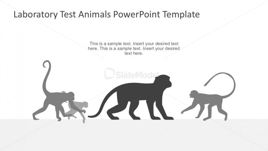 laboratory monkeys powerpoint graphics - slidemodel, Modern powerpoint