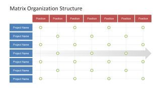 Matrix Presentation of Organizational Chart