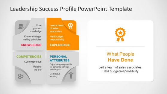 PPT Template of Leadership Profile Experience