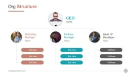 Organizational Structure with Team Member Photos and Roles