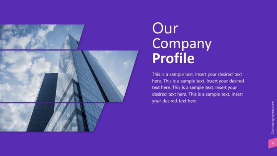 Company Profile Introduction Slide