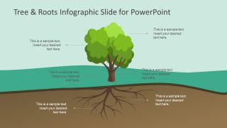 Tree & Roots Infographic Slide for PowerPoint
