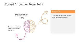 Brain Shape PowerPoint Template