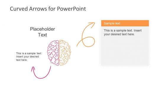 Curved Arrows Template Brain Shape