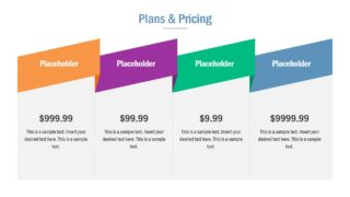 Slide for Pricing Options for Customers