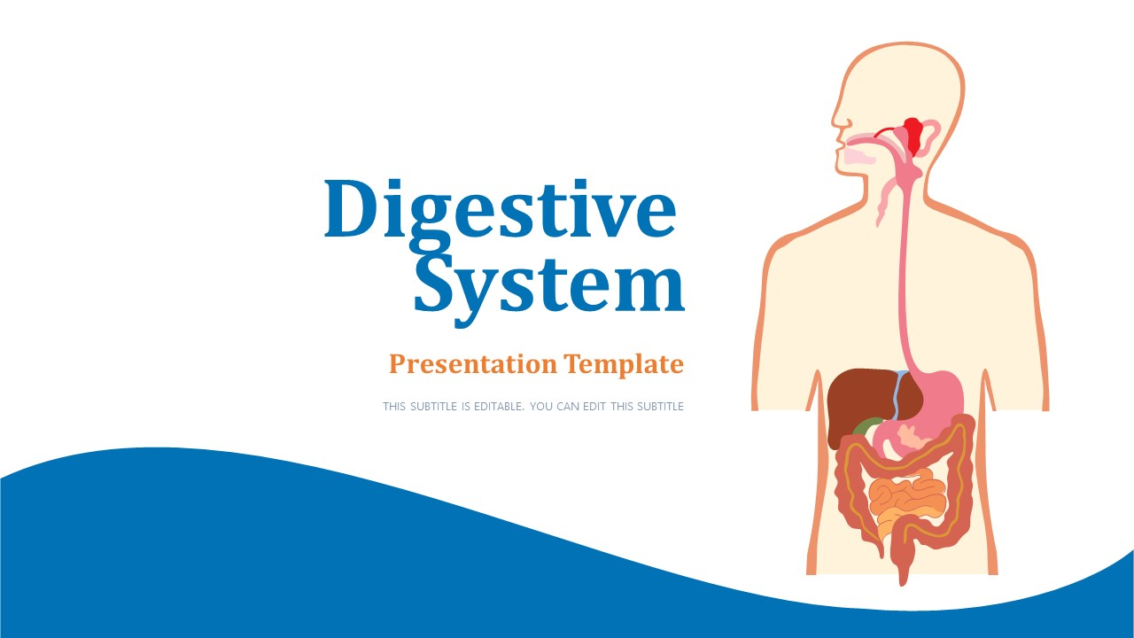 PowerPoint Digestive System Label Diagram