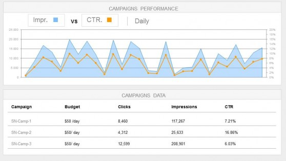 Digital Campaigns Management Key Performance Indicators