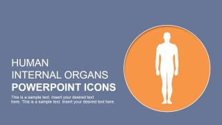 PowerPoint Slide with Human Body Clipart
