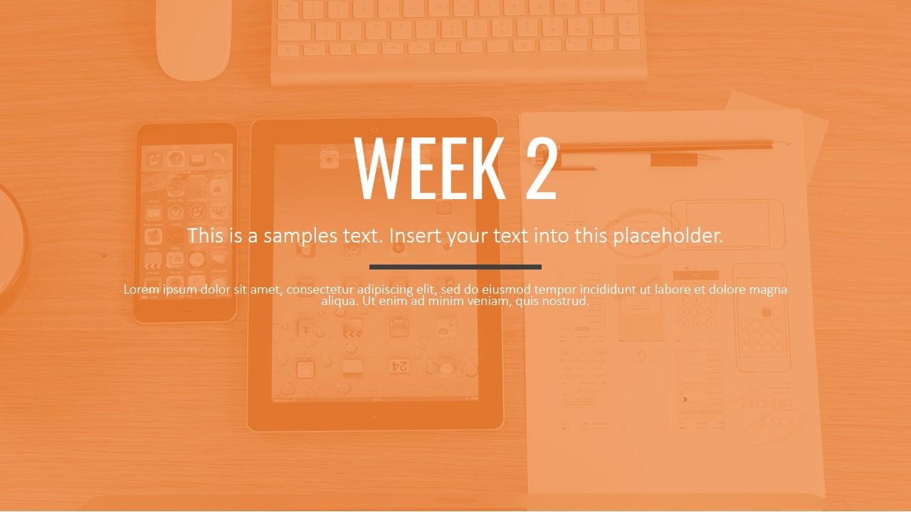 Professional PowerPoint Templates Separator Slide