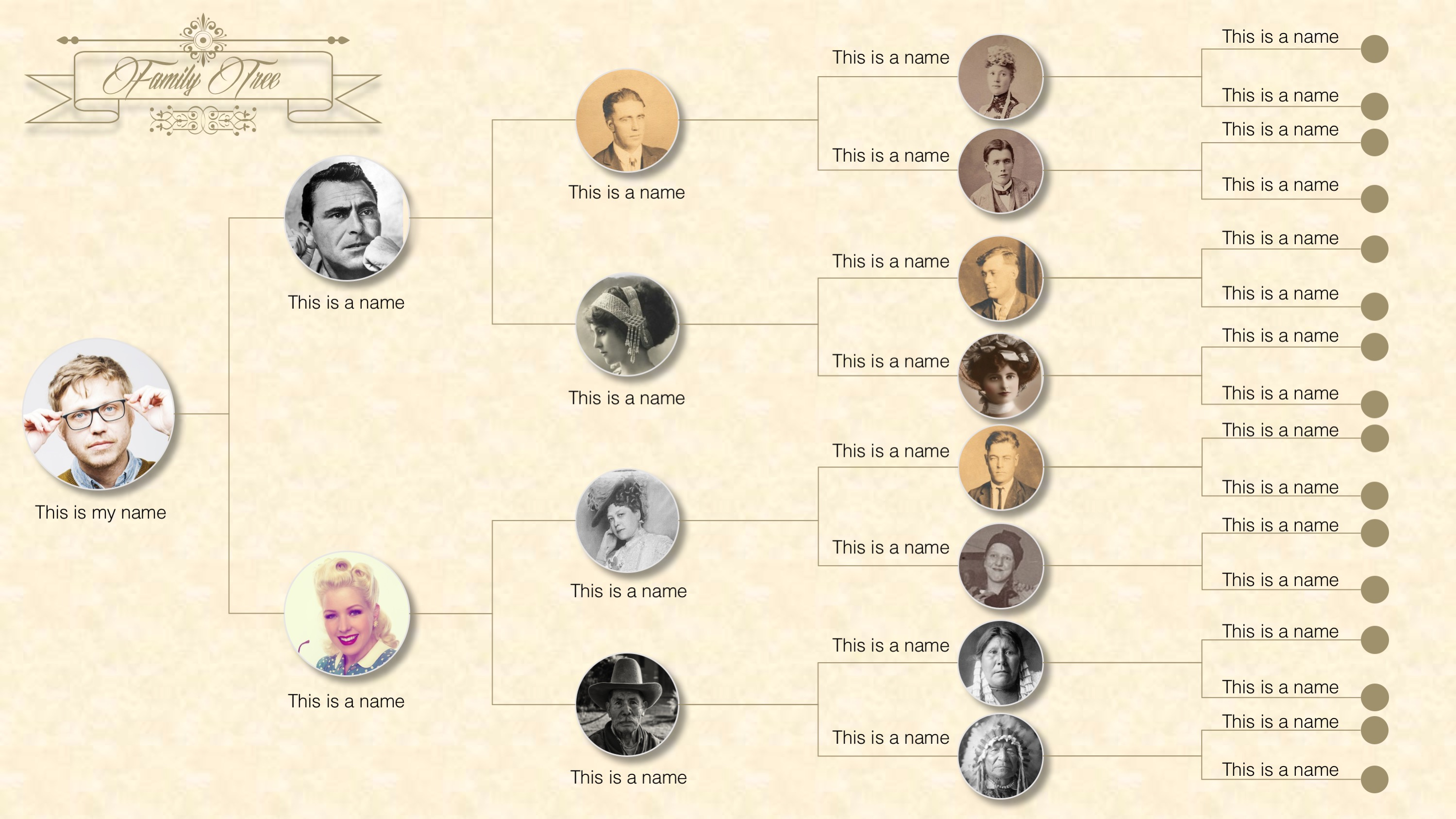 PPT Template of Family Tree