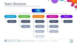 Hierarchy Diagram of Organizational Structure