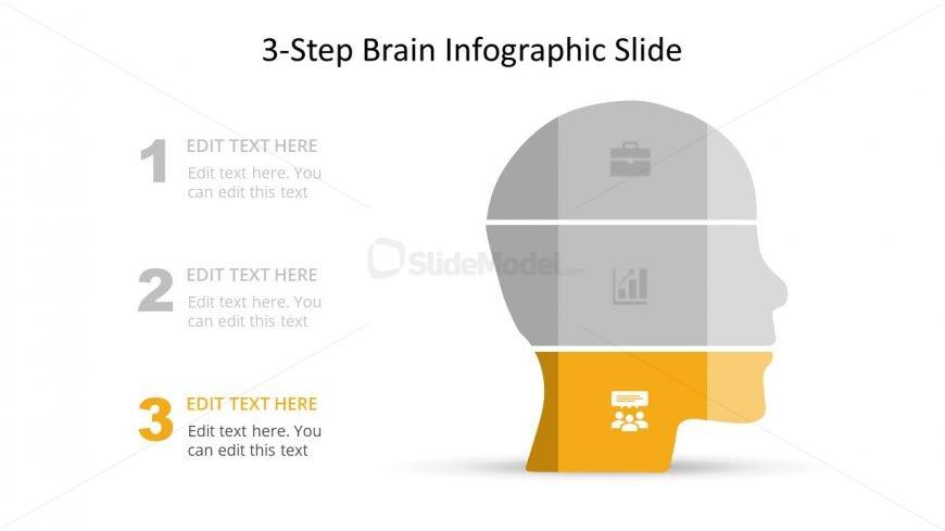 Presentation of Brain Infographics Diagram
