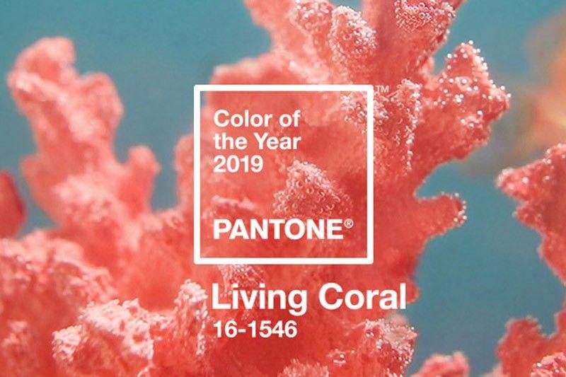 PPT Color Living Color